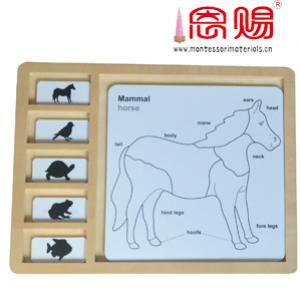 horse from bird turtle fish puzzle control chart PP