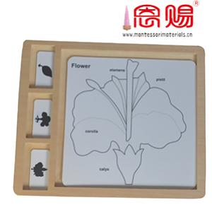 leaf tree and flower puzzle control chart PP
